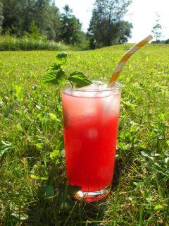Proteinhaltiges Erfrischungsgetränk für den Sommer