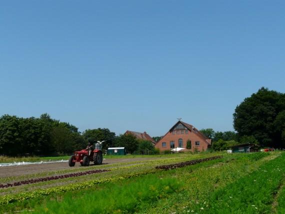 Auf Hof Pente wird Landwirtschaft für mehr als 250 Mitglieder nach den Prinzipien von Demeter betrieben. (Foto: Hof Pente)