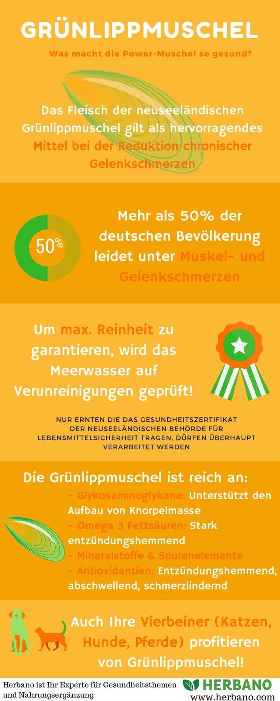 B-924227_gruenlippmuschel