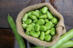 Brot mit mehr Proteinen und Ballaststoffen: Ackerbohne mit guten Eigenschaften