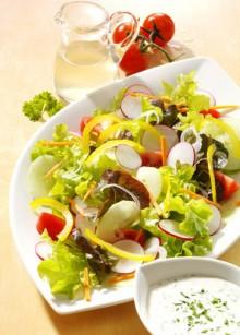Eichblatt-Salat