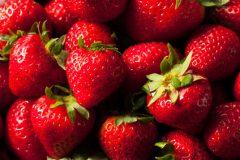 WDR Recherche: Illegale Wasserentnahme für Erdbeeren zerstört eines der wichtigsten Feuchtgebiete Europas