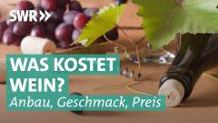 """Reportage """"Was kostet: Wein?"""" im SWR Fernsehen"""