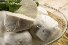 Käse ohne Milch?Alternativen zu Mozzarella, Frischkäse und Parmesan