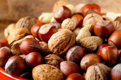 Heimische Nüsse sammeln und genießen