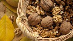 Appetit der Deutschen auf Nüsse steigt – Tipps für Einkauf und Lagerung