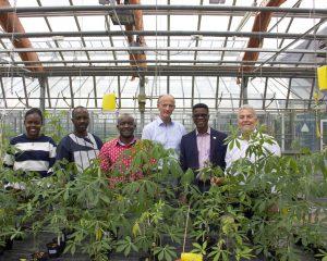 Cassava Forscher Dr. Stephan Winter von der DSMZ (ganz rechts)