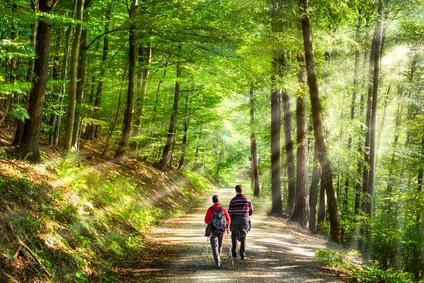 Fitness: Wandern