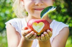 Apfelautomat: Äpfel aus dem Automaten: Flavura Apfelautomaten, Verkaufsautomaten, Warenautomaten, Trommelautomaten