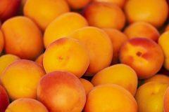 Aprikosen in der Küche: aromatische Früchte für Süßes und Pikantes