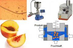 bild-pdm-2014-07-fruchtsafthomogenisation_1024_674_80-524x344.jpg
