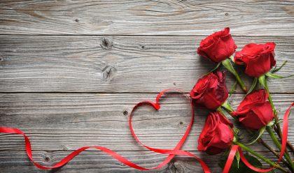 Blumenautomat: Blumen aus dem Automaten: Flavura Verkaufsautomaten, Warenautomaten, Trommelautomaten