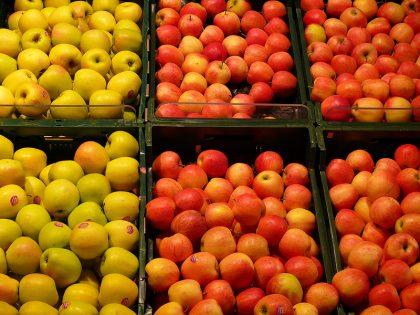 Apfelsorten