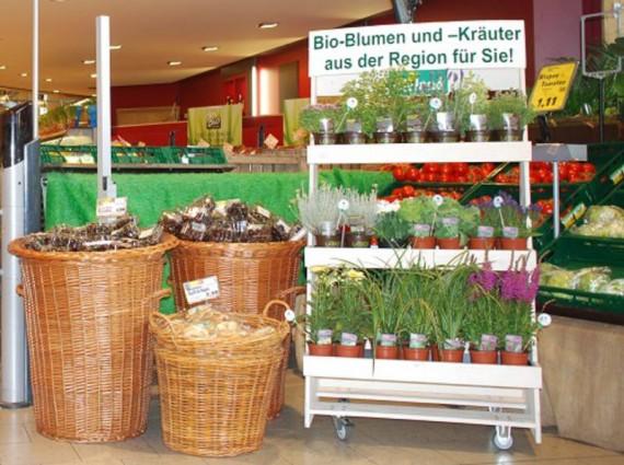 csm_Im_Markt__c_AG_Bio-ZierpflanzenFotoChristiane_James-web_8a36bfd6d7