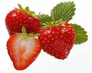 erdbeeren-wirths