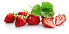 Erdbeerautomat: Erdbeeren aus dem Automaten: Flavura Erdbeerenautomaten, Verkaufsautomaten, Warenautomaten
