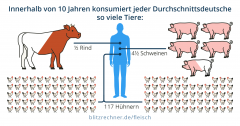 Kostenfreier Fleisch-Rechner ermittelt Klimabilanz von Vegetariern
