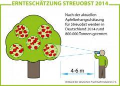 grafik_ernte_streuobst-524x378.jpg