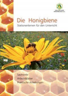 honigbiene_stationenlernen-300x423.jpg