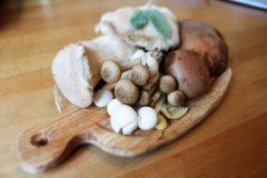 Wenn statt Fleisch Pilze auf den Teller kommen: Portobello, Shiitake, Austernseitling