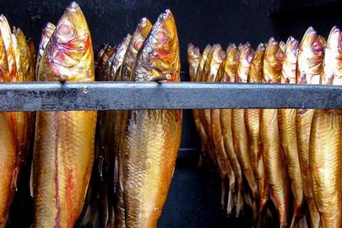Räucherfisch