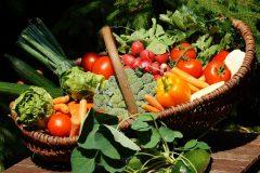 So lassen sich Kinder von Gemüse begeistern