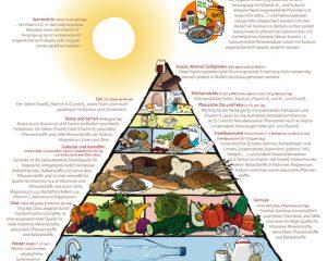 vegetarische-ernaehrungspyramide.jpg