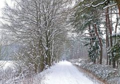 Mit Rad oder E-Bike sicher durch die Wintermonate